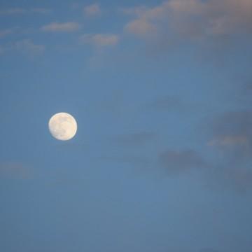 Moon #1