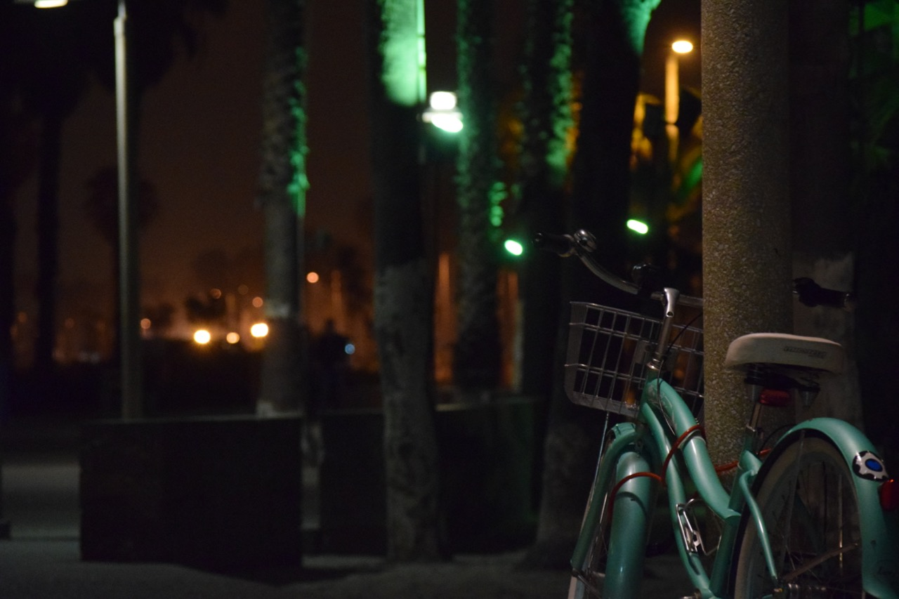 Evening Walk in Santa Monica